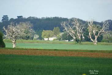 Paysages d finition for Paysage definition